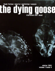 TheDyingGoose